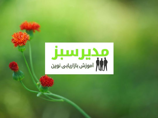 طراحی سایت مدیر سبز